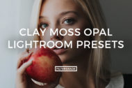 Clay Moss Opal Lightroom Presets