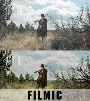 filmic premiere pro presets