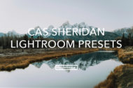 Cas Sheridan Feature Lightroom Presets