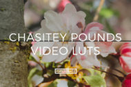 Featured Chasitey Pounds Video LUTs - FilterGrade Digital Marketplace